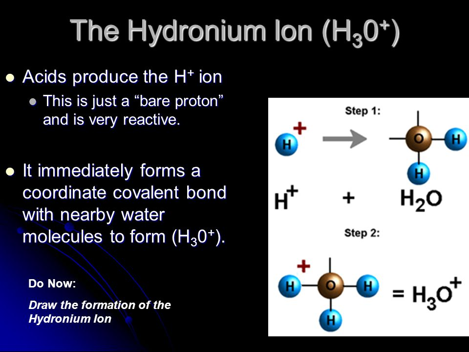 The Hydronium Ion (H30+) Acids produce the H+ ion