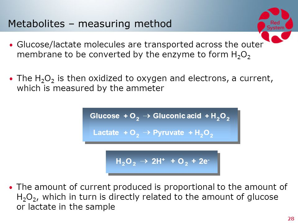 Metabolites – measuring method