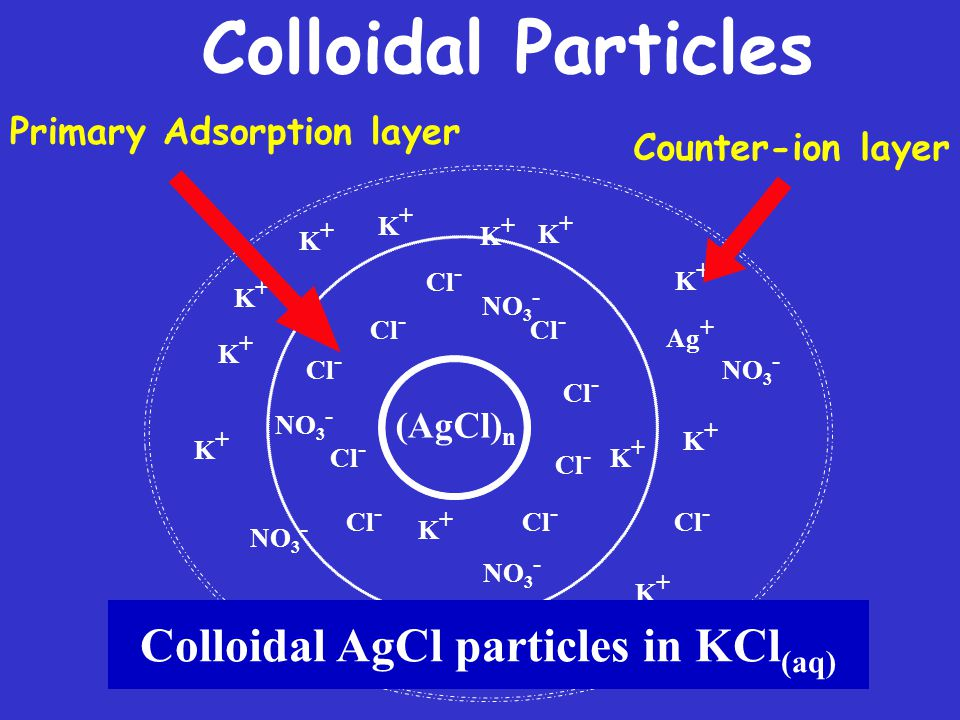 Colloidal AgCl particles in KCl(aq)