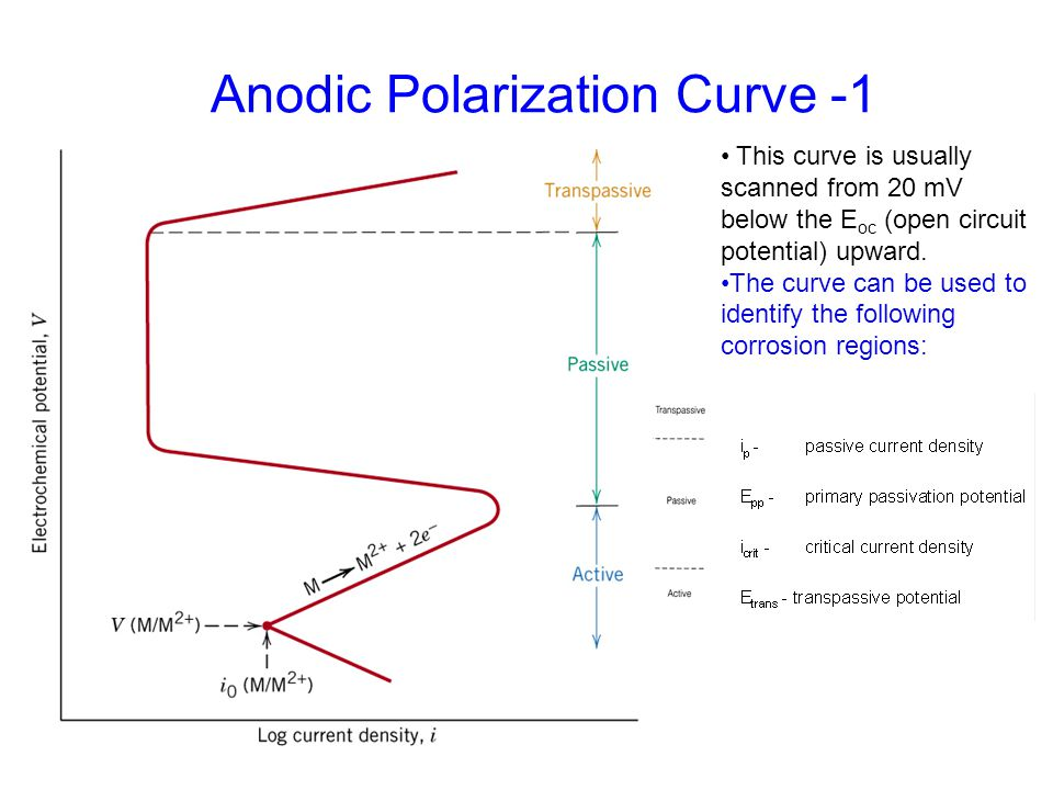 Anodic Polarization Curve -1