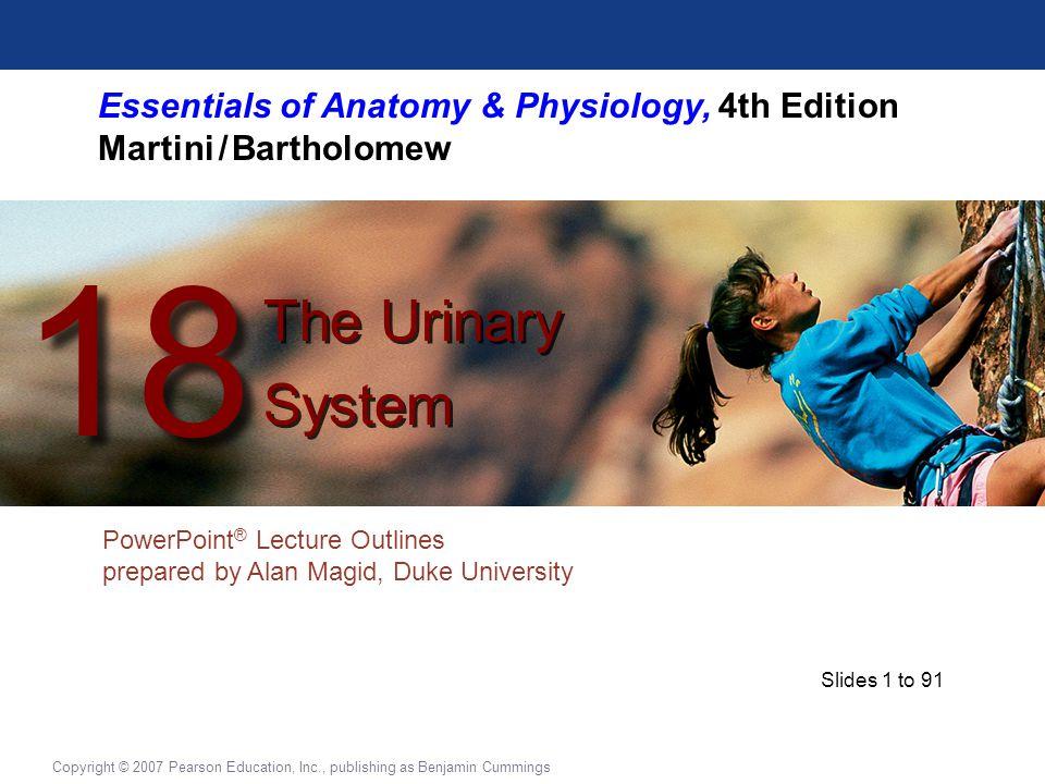 Slides 1 to 91 Copyright © 2007 Pearson Education, Inc., publishing as Benjamin Cummings