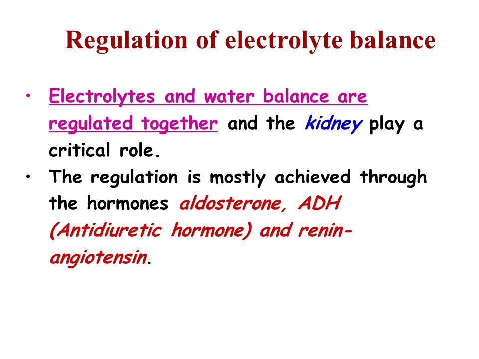 Regulation of electrolyte balance