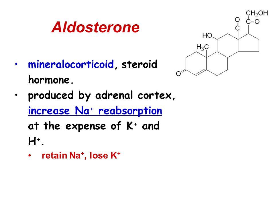 Aldosterone mineralocorticoid, steroid hormone.
