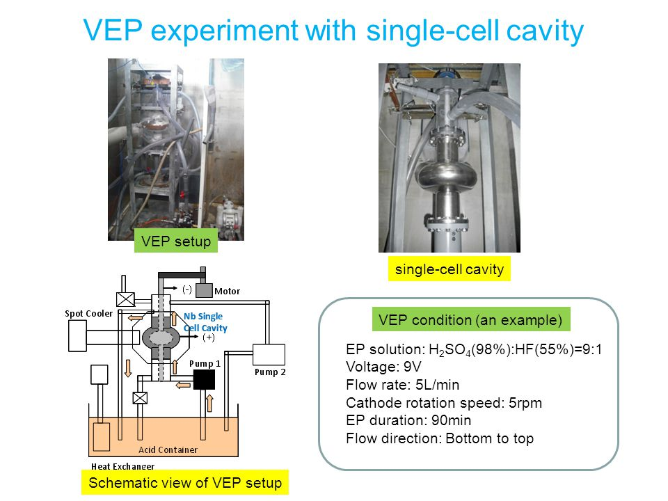 VEP experiment with single-cell cavity