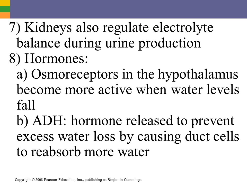 7) Kidneys also regulate electrolyte balance during urine production