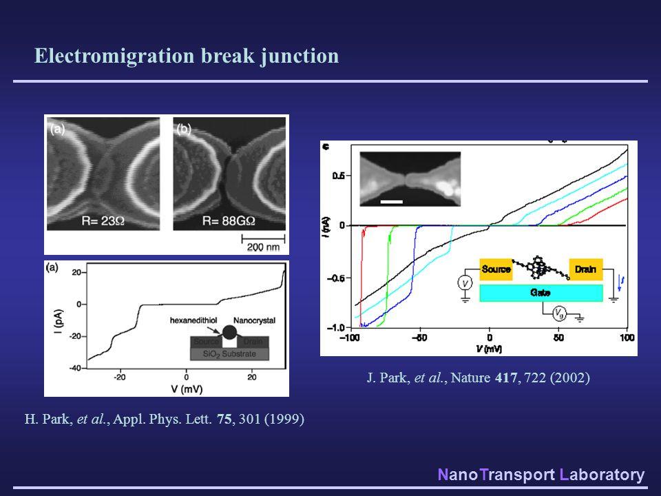 Electromigration break junction