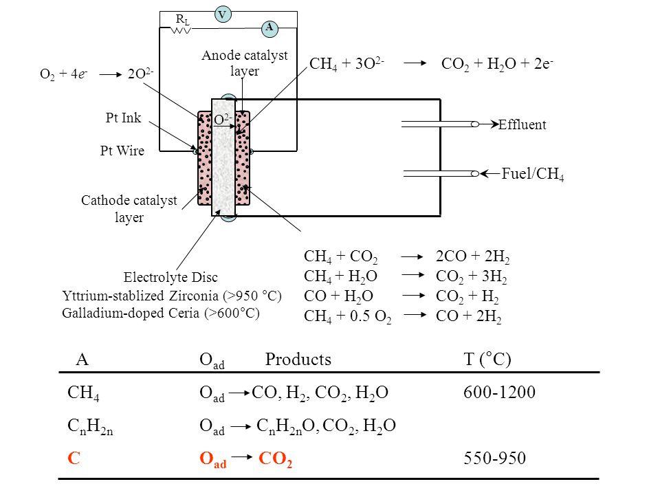 Cathode catalyst layer