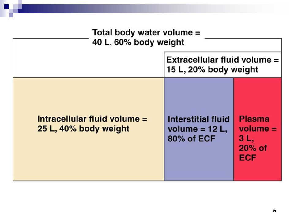 Fluid Compartments