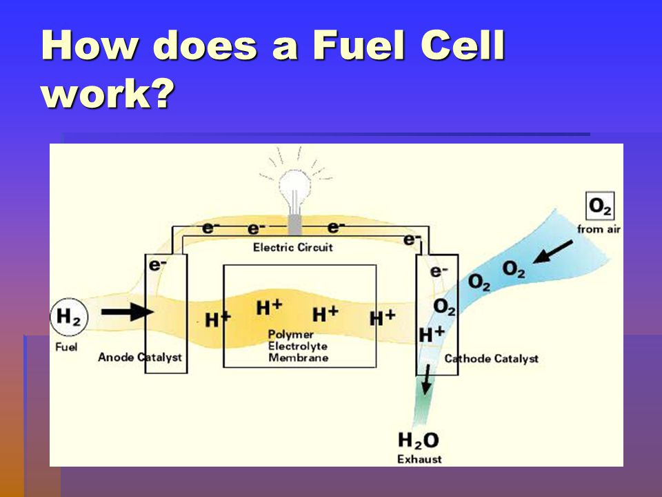 How does a Fuel Cell work