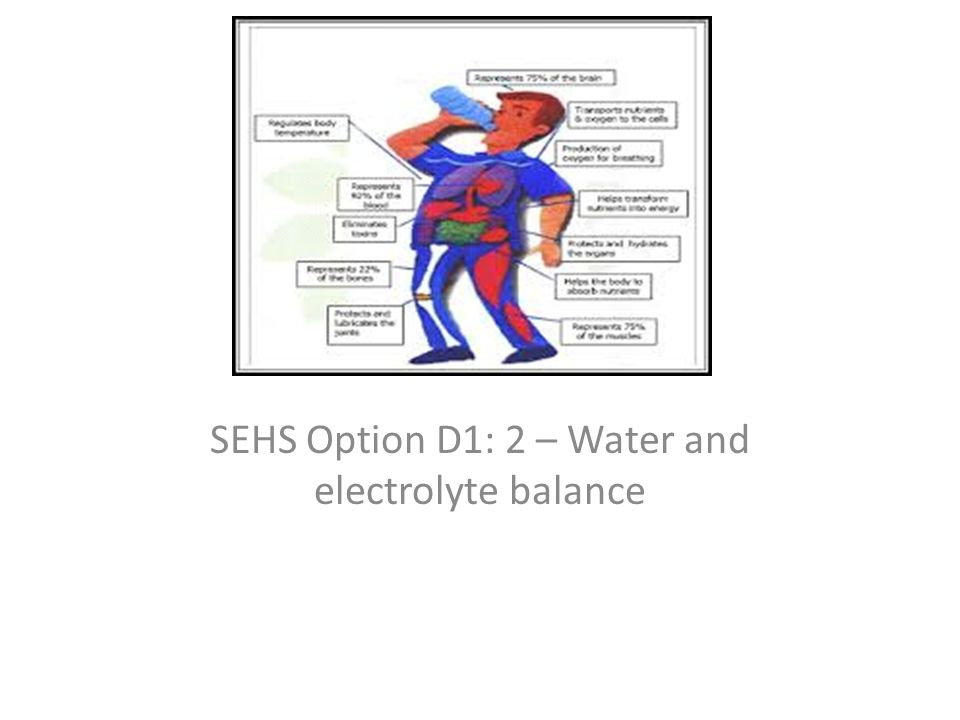 SEHS Option D1: 2 – Water and electrolyte balance