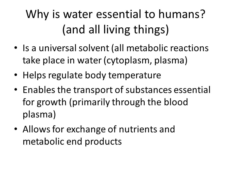 Why is water essential to humans (and all living things)