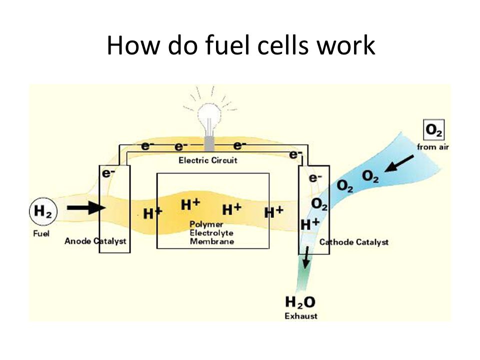 How do fuel cells work