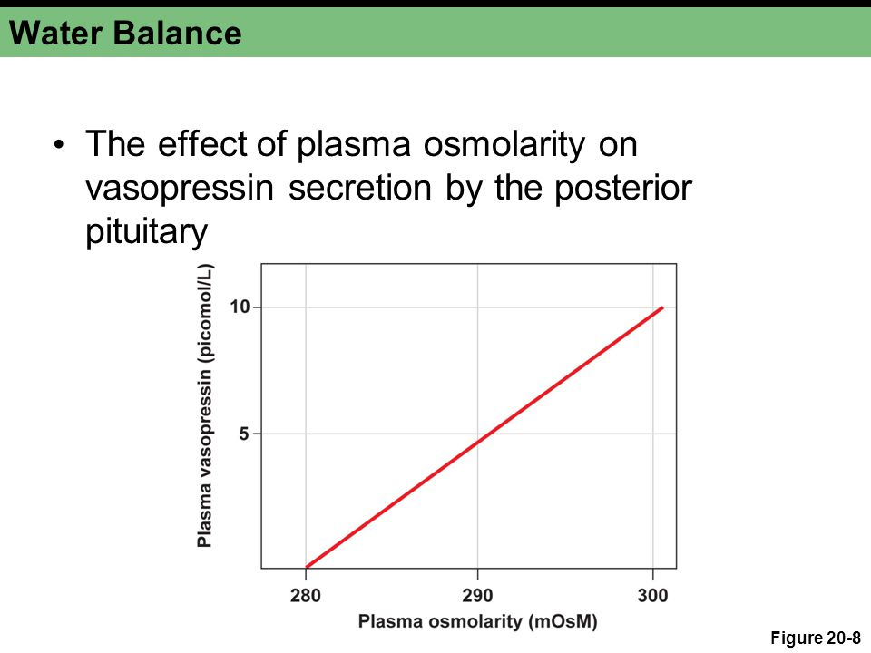 Water Balance The effect of plasma osmolarity on vasopressin secretion by the posterior pituitary.