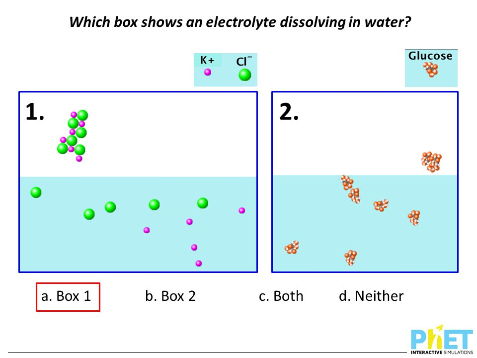 Which box shows an electrolyte dissolving in water