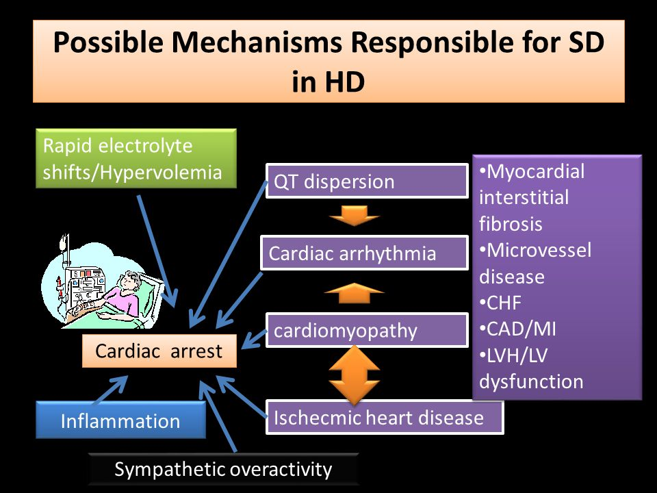 Possible Mechanisms Responsible for SD in HD