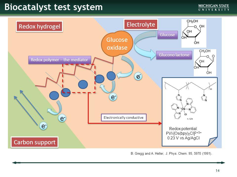 Biocatalyst test system