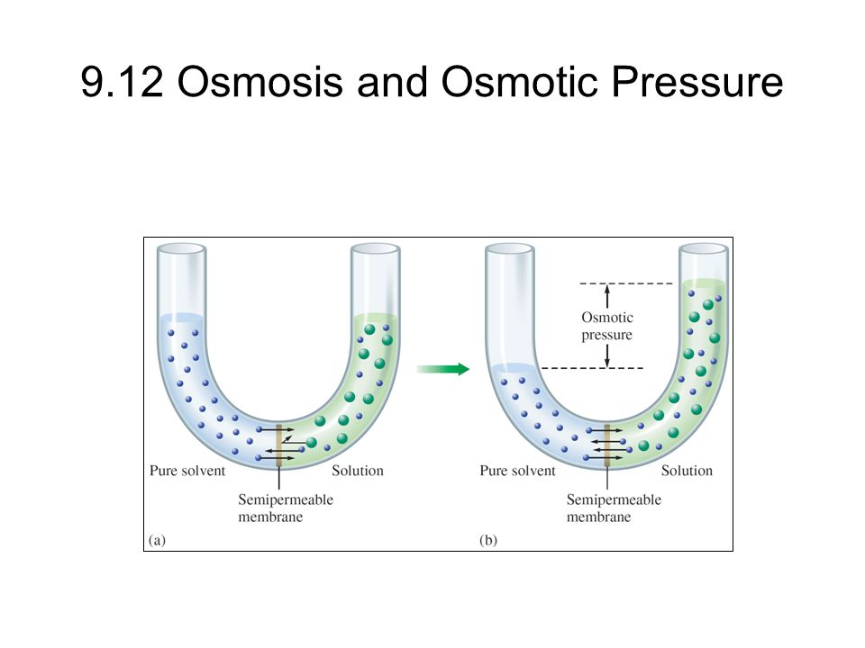9.12 Osmosis and Osmotic Pressure