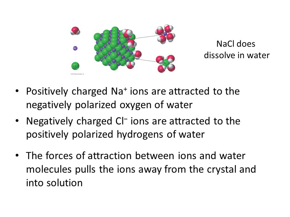 NaCl does dissolve in water. Positively charged Na+ ions are attracted to the negatively polarized oxygen of water.