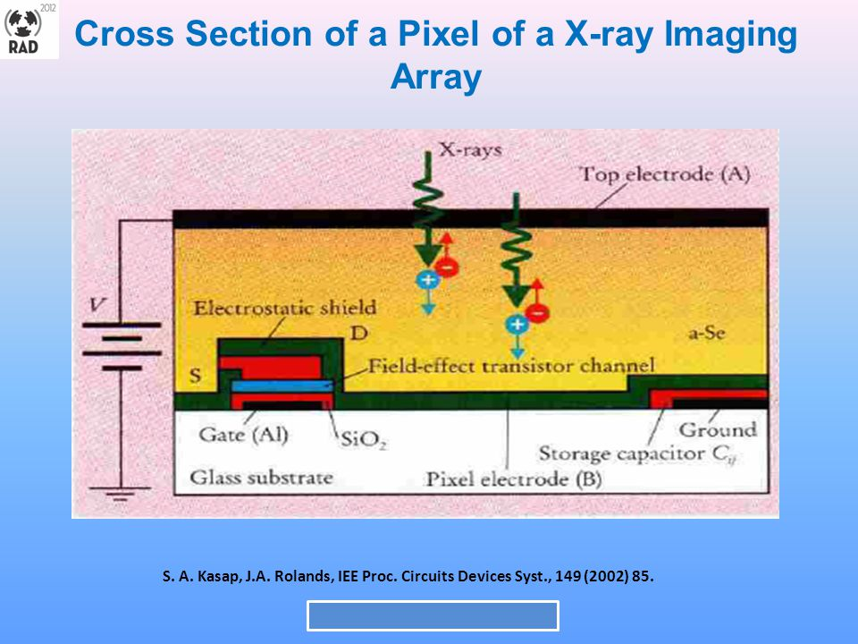 Cross Section of a Pixel of a X-ray Imaging Array