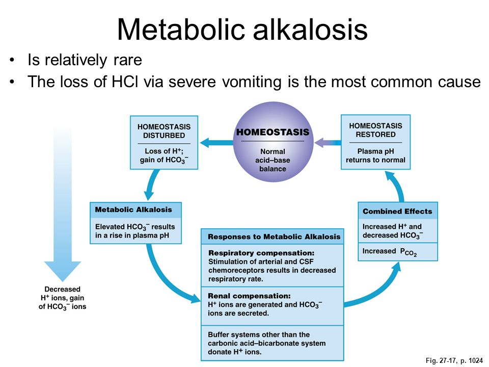 Metabolic alkalosis Is relatively rare