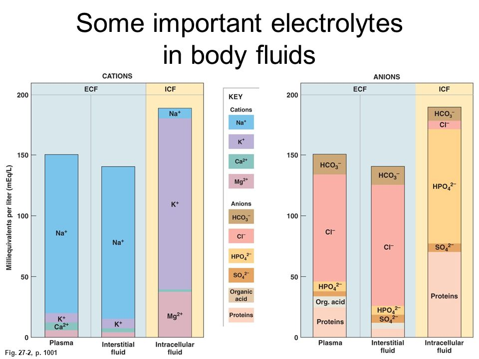 Some important electrolytes in body fluids