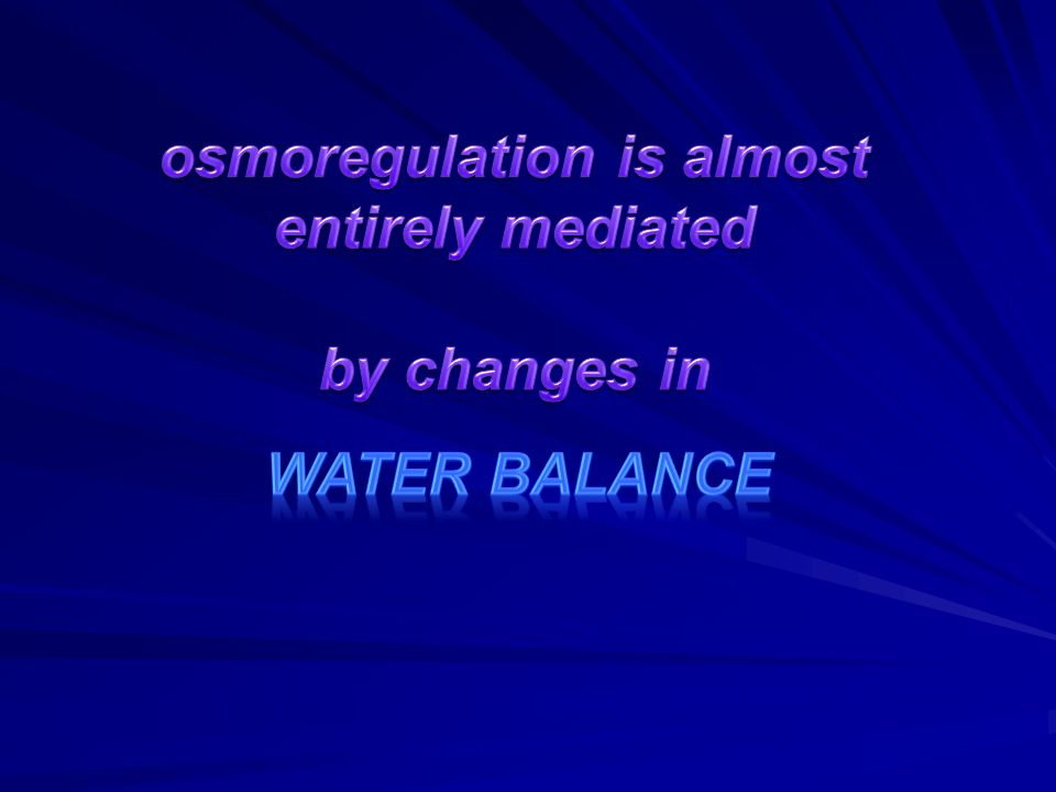 osmoregulation is almost entirely mediated