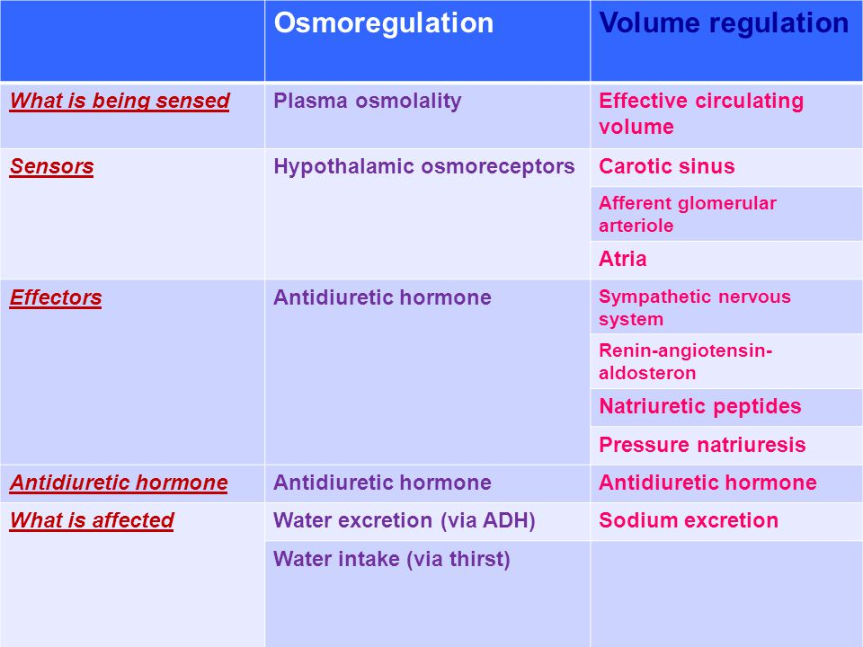 Osmoregulation Volume regulation What is being sensed