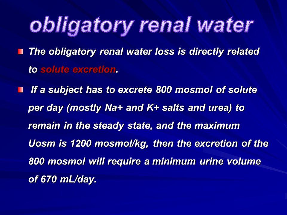 obligatory renal water