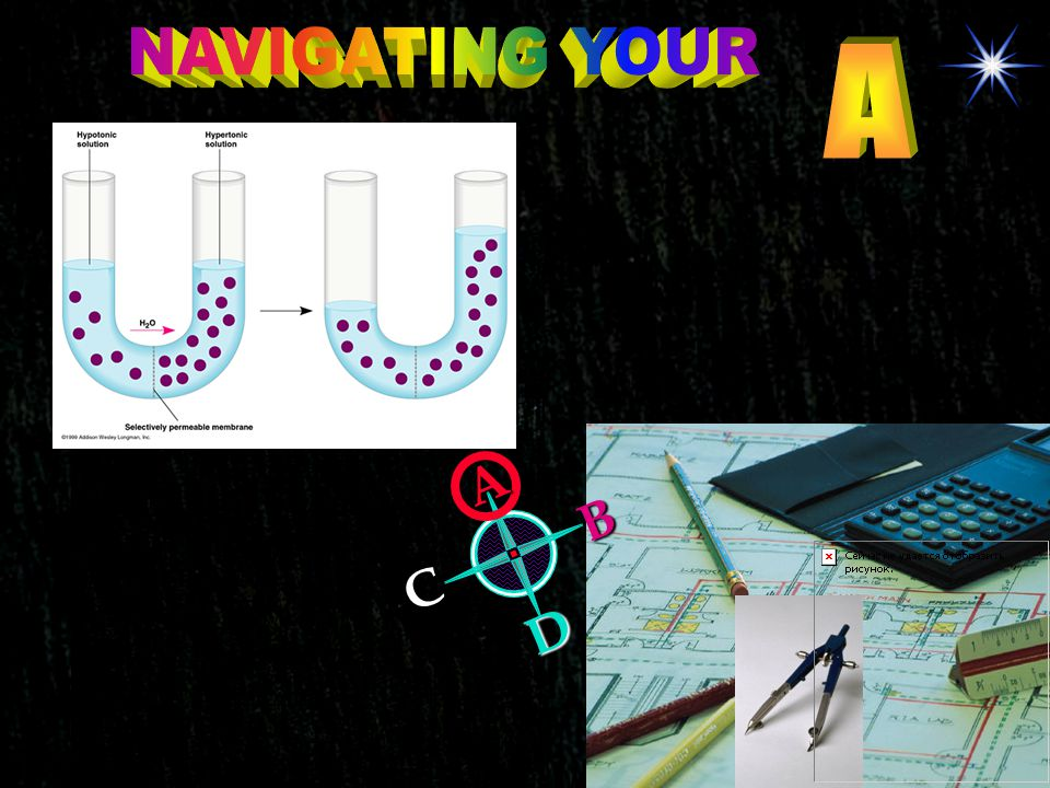NAVIGATING YOUR A A B C D