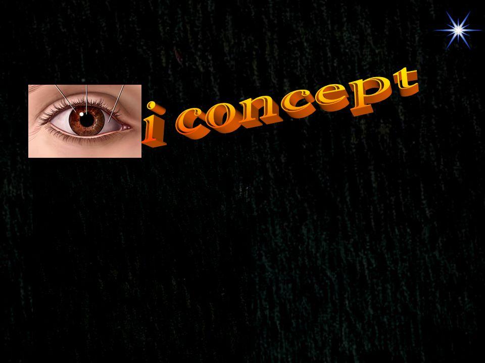 i concept