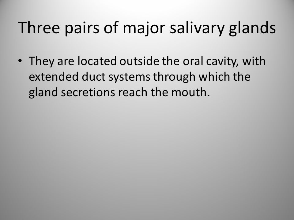 Three pairs of major salivary glands