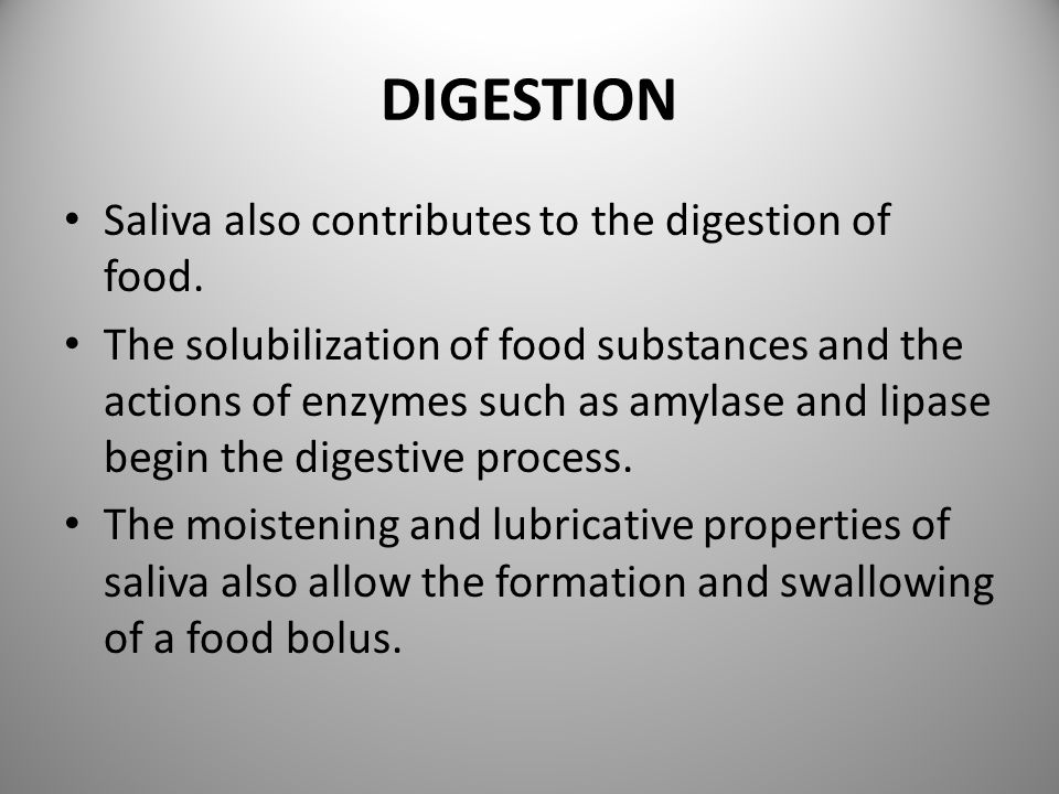 DIGESTION Saliva also contributes to the digestion of food.