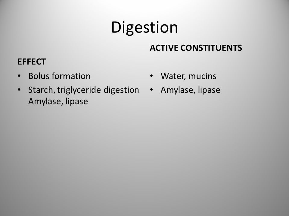 Digestion EFFECT ACTIVE CONSTITUENTS Bolus formation
