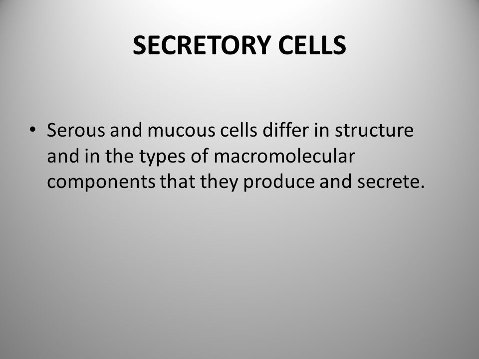 SECRETORY CELLS Serous and mucous cells differ in structure and in the types of macromolecular components that they produce and secrete.