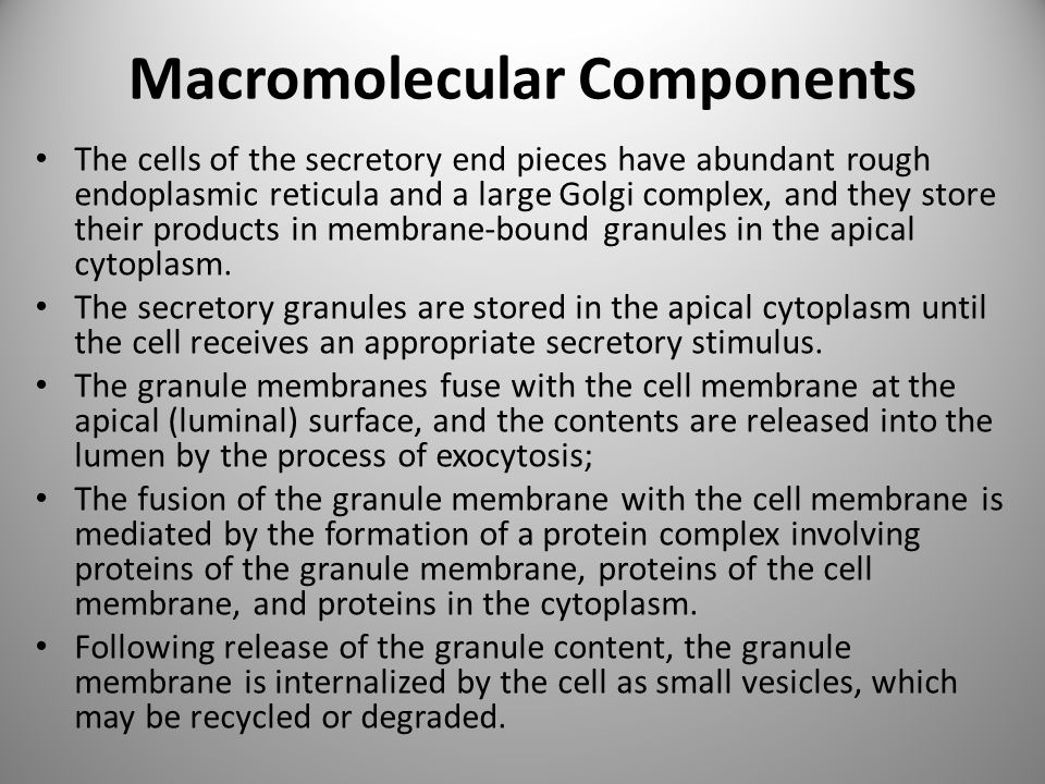Macromolecular Components