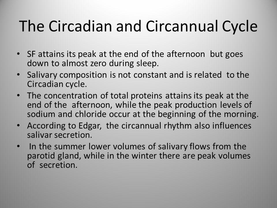 The Circadian and Circannual Cycle