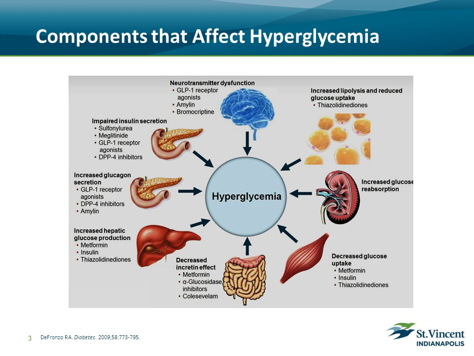 Components that Affect Hyperglycemia