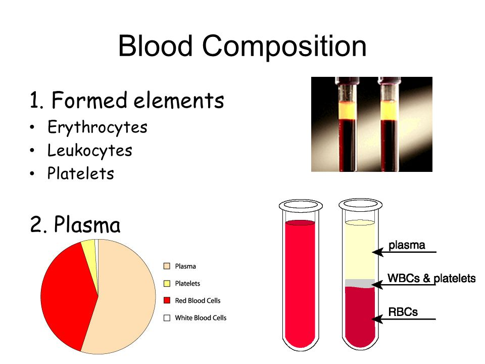 Blood Composition 1. Formed elements 2. Plasma Erythrocytes Leukocytes