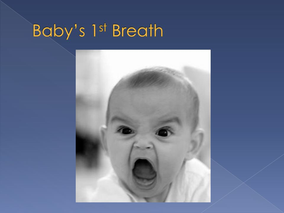 Baby's 1st Breath