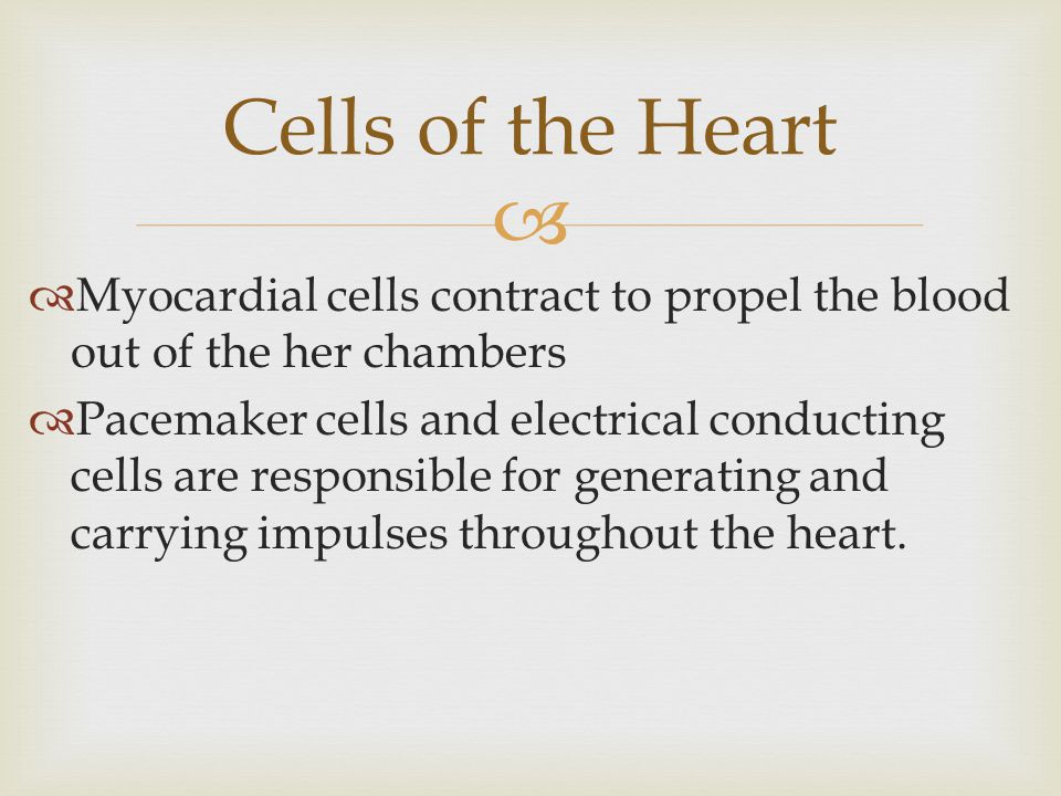 Cells of the Heart Myocardial cells contract to propel the blood out of the her chambers.