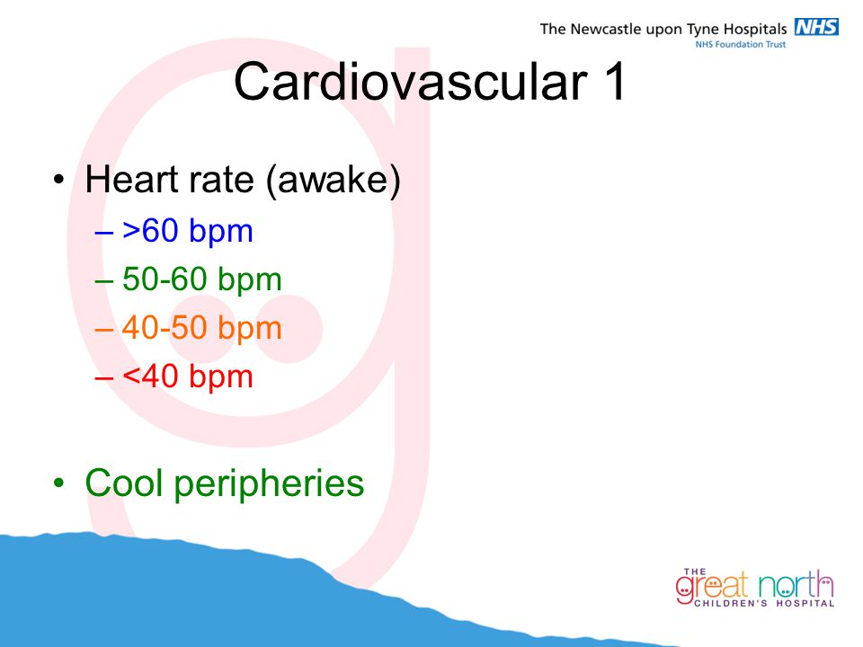 Cardiovascular 1 Heart rate (awake) Cool peripheries >60 bpm