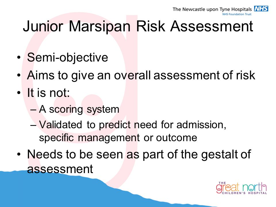 Junior Marsipan Risk Assessment