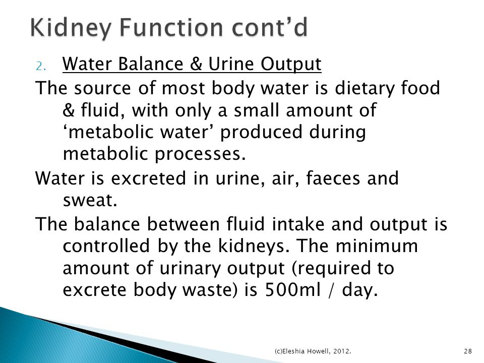 Kidney Function cont'd