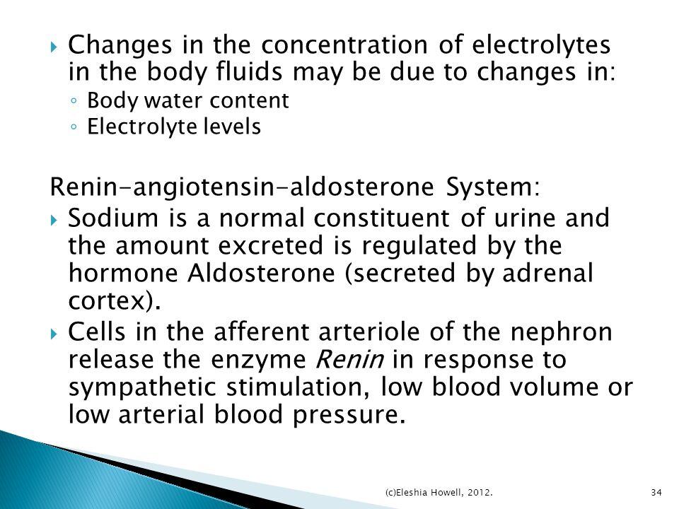 Renin-angiotensin-aldosterone System: