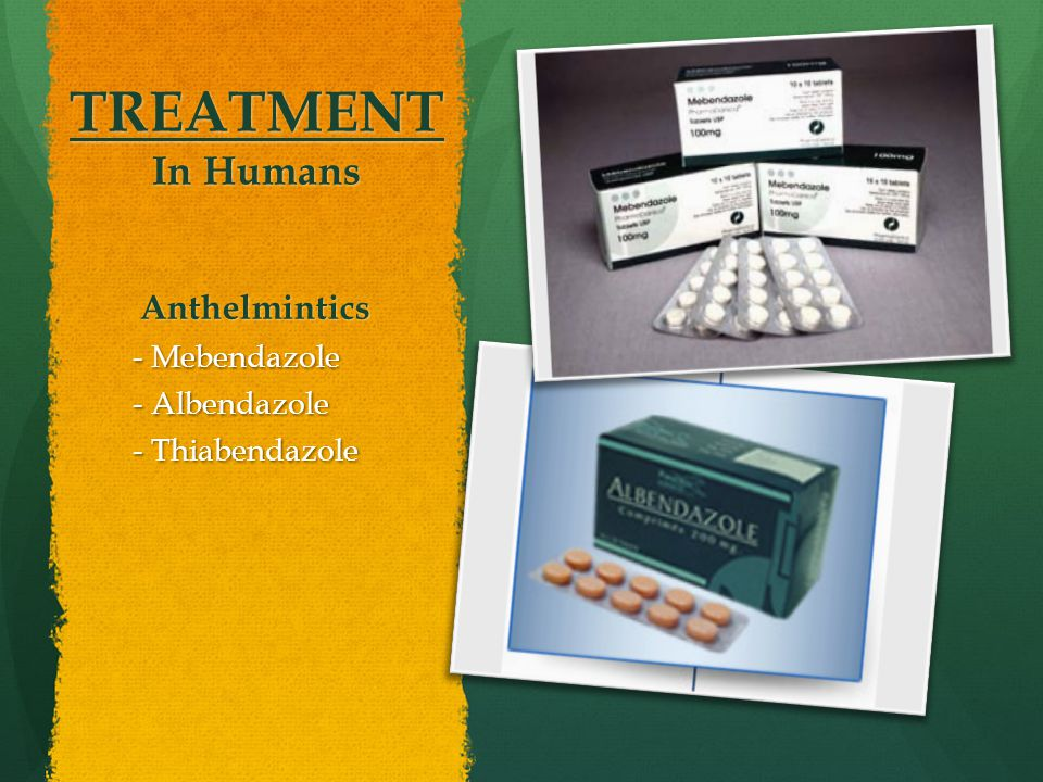 TREATMENT In Humans Anthelmintics - Mebendazole - Albendazole