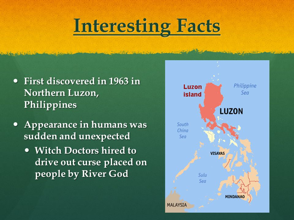 Interesting Facts First discovered in 1963 in Northern Luzon, Philippines. Appearance in humans was sudden and unexpected.