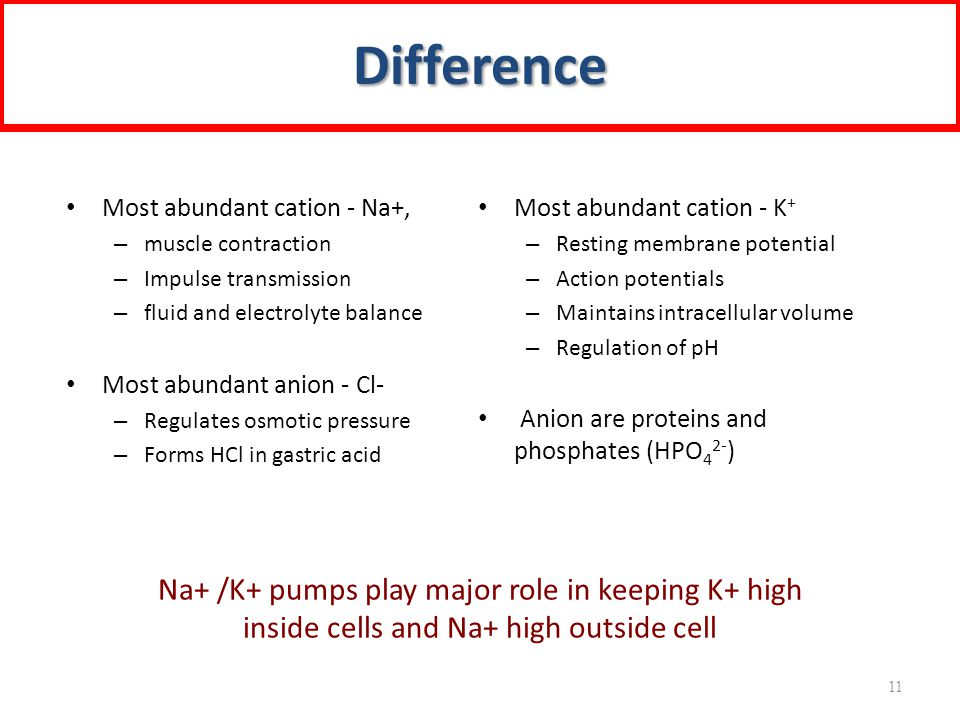 Difference Na+ /K+ pumps play major role in keeping K+ high