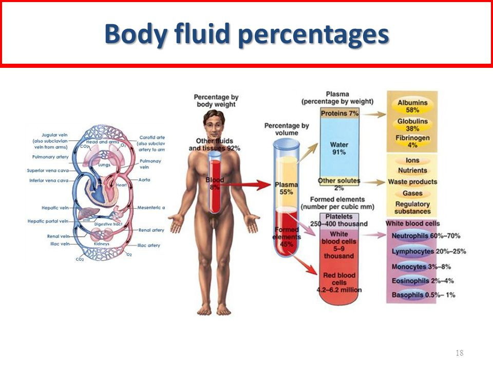 Body fluid percentages