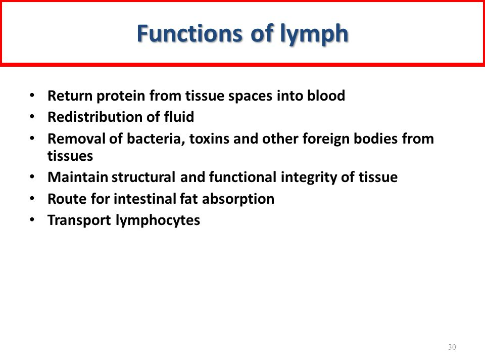 Functions of lymph Return protein from tissue spaces into blood