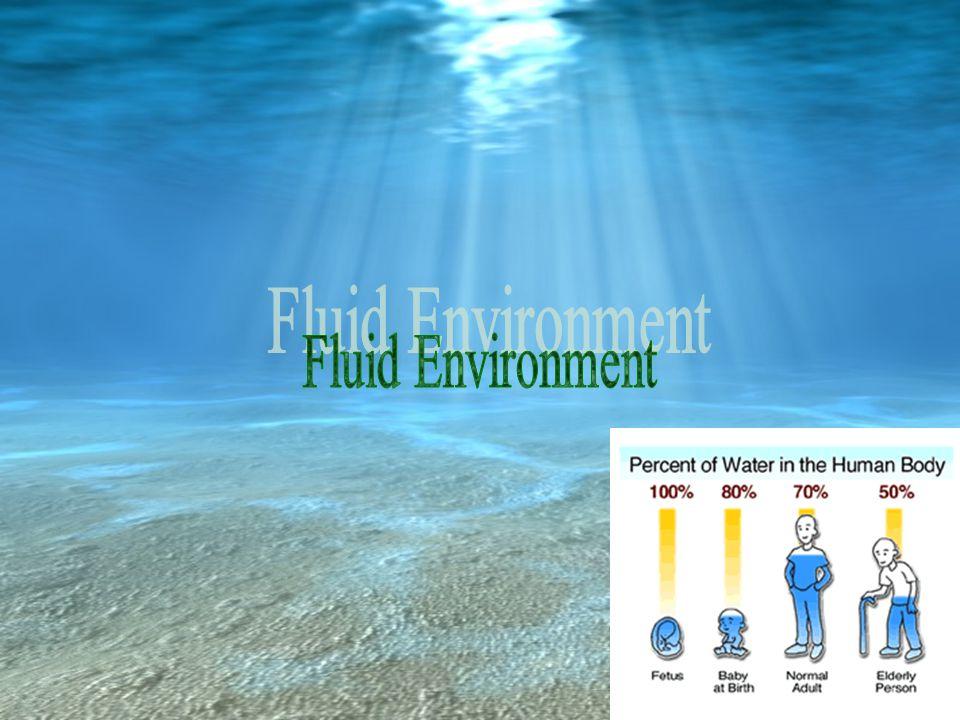 Fluid Environment